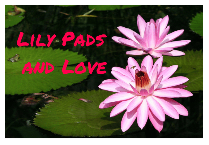 lily-pads-and-love.png