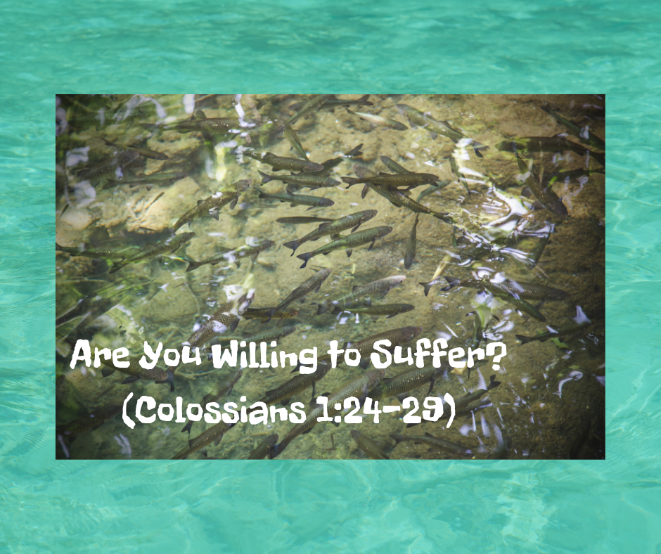 Are You Willing to Suffer_(Colossians 1_24-29).png