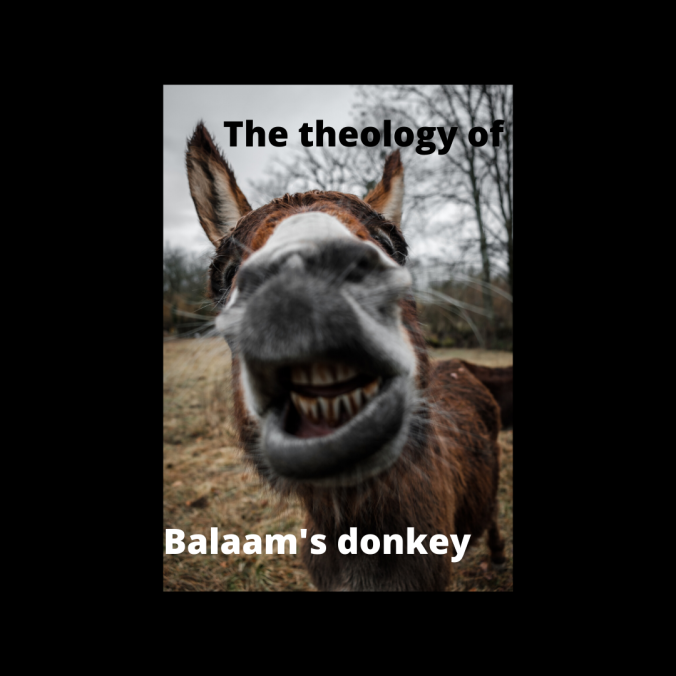 The theology of Balaam's Donkey